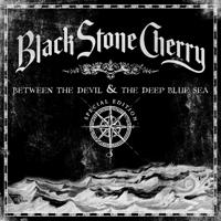 Black Stone Cherry - I Want To Be Loved