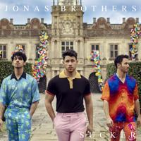 Jonas Brothers - Only Human